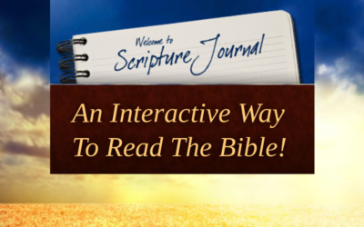 This is a great time to join our online community Bible study,